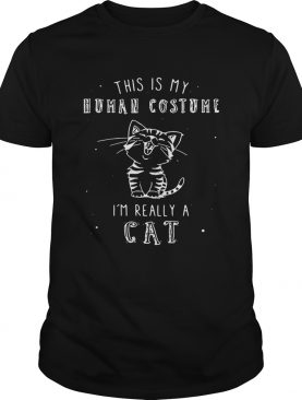 This is my human costume I'm really a cat shirt
