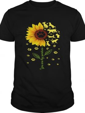 Dogs sunflower you are my sunshine shirt