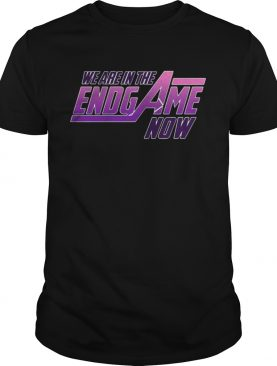 We Are In The Endgame Now shirt