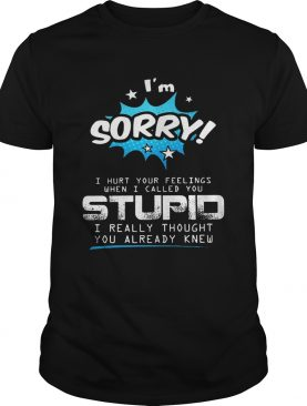 Im sorry I hurt your feelings when I called you stupid shirt