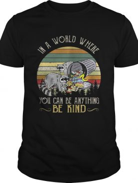Racoon in a world where you can be anything be kind sunset shirt