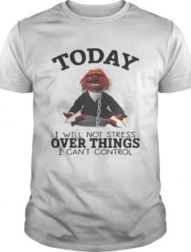 The Muppettoday I will not stress over things I cant control shirt