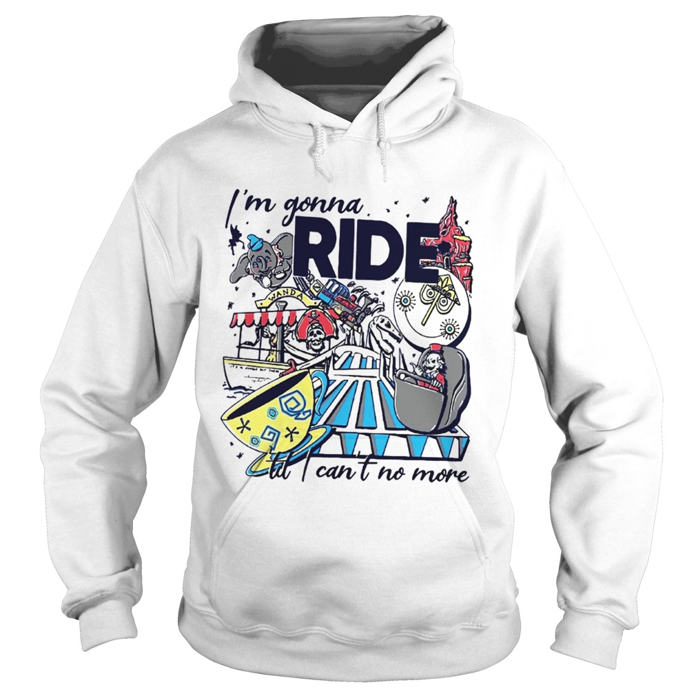 Theme Park Rider Im gonna ride til I cant no more Hoodie