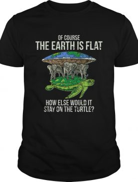 Flat Earth Society Turtle Elephants Stay On The Turtle shirt