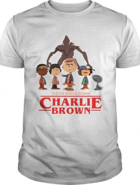 Its the upside down Charlie Brown Stranger Things shirt