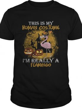 This is my human costume Im really a Flamingo shirt