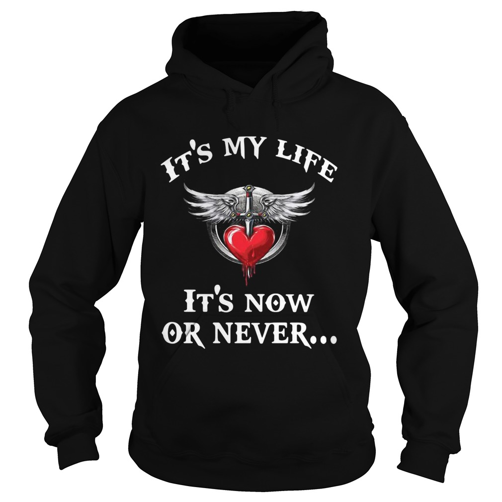 Bon Jovi its my life its now or never Hoodie