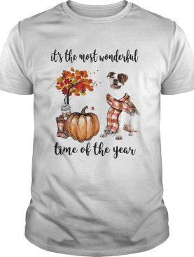 American Pit Bull Terrier its the most wonderful time of the year shirt