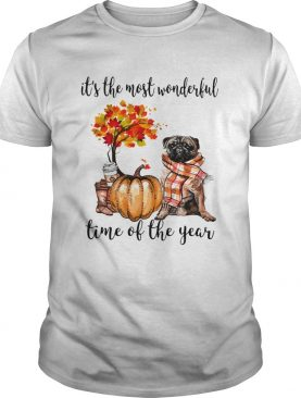 Bulldog pumpkin Its the most wonderful time of the year shirt
