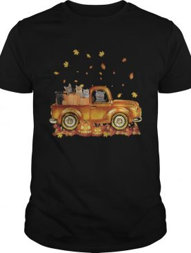 Cats pumpkin car halloween shirt