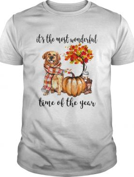 Its the most wonderful time of the year Dog Pumpkin shirt
