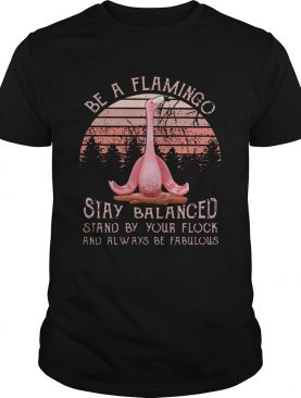 Be a flamingo stay balanced stand by your flock shirt