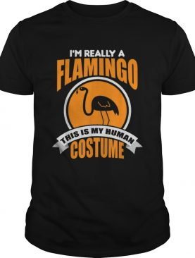Beautiful Im Really A Flamingo This Is My Human Costume shirt