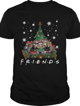 Harry Potter Hermione And Ron Weasley Christmas Tree style Friends tv show shirt