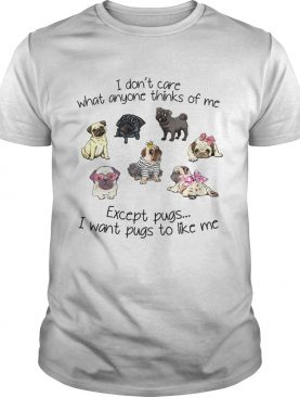 I dont care what anyone thinks of me Except Pugs I want Pugs to like me shirt