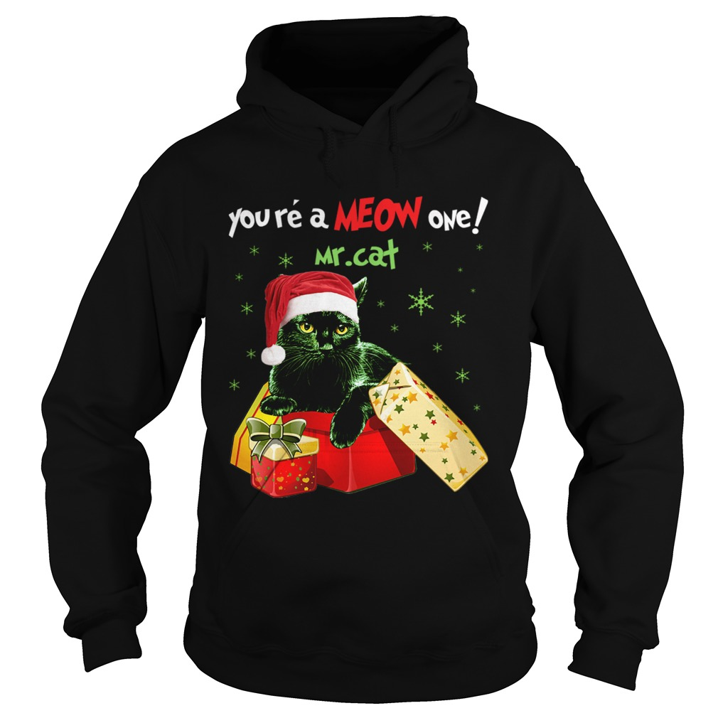 Youre A MEOW One Mr Cat Christmas Holiday Funny TShirt Hoodie