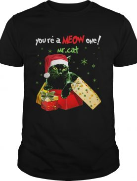 Youre A MEOW One Mr Cat Christmas Holiday Funny TShirt