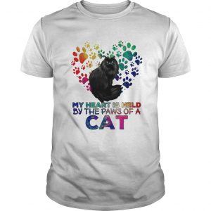 My heart is held by the paws of a cat LGBT  Unisex