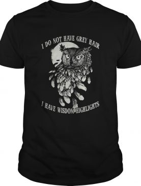 Hot Owl I do not have grey hair I have wisdom highlights shirt