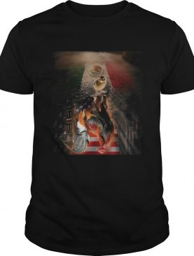 Chicken reflection florida american flag independence day shirt