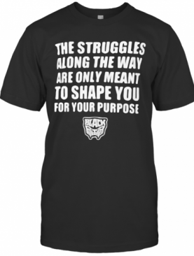The Struggles Along The Way Are Only Meant To Shape You For Your Purpose Black Panther Rip Chadwick 1976 2020 T-Shirt