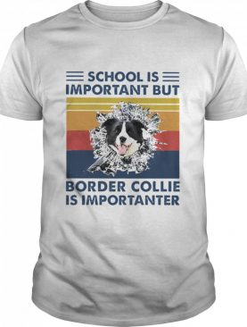 School is important but Border Collie is importanter vintage shirt